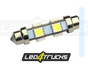 XENON WHITE - 6xSMD LED 24-28V - FESTOON